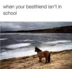When Your Bestfriend