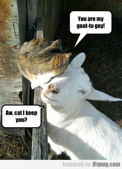 You Are My Goat Yo Guy