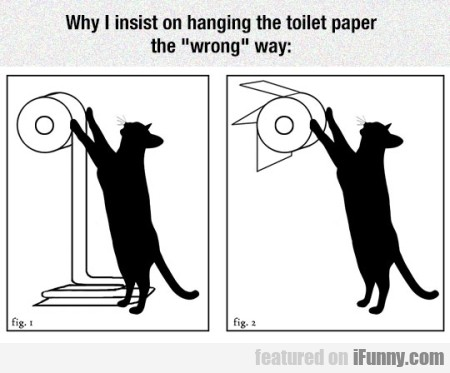 Why I Insist On Hanging The Toilet