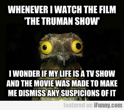 whenever i watch the film the truman show...
