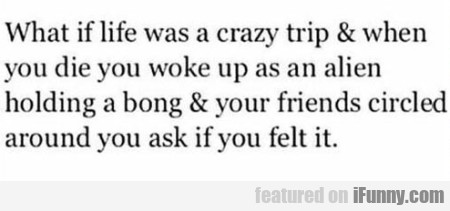What If Life Was A Crazy Trip