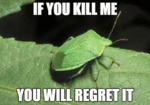 If You Kill Me, You Will Regret It...