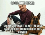 Good Guy Cesar