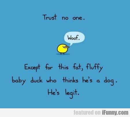 Trust No One. Except Fot