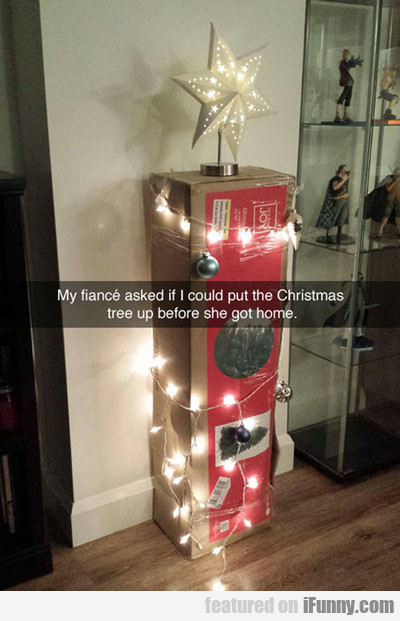 my fiance asked me if i could put the christmas...