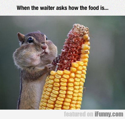 When The Waiter Asks How The Food Is...