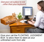 Give Your Cat A Place