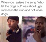 When You Realize The Song Who Let The Dogs Out...