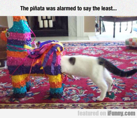 The Pinata Was Alarmed