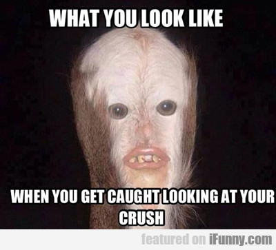 What You Look Like...
