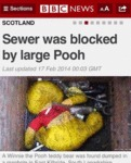 Sewer Was Blocked By Large Pooh...