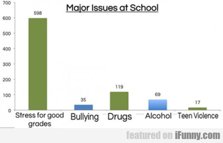 Major Issues At School