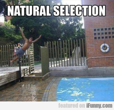 Natural Selection...