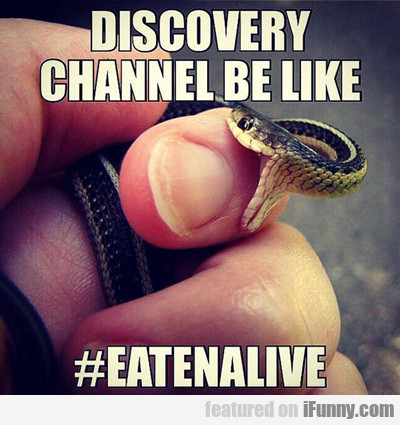 Discovery Channel Be Like...