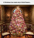 A Christmas Tree Made Of Dried Flowers...
