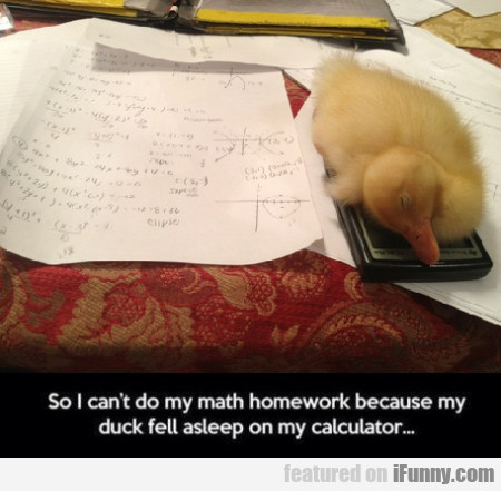 So I Can't Do My Math.