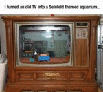 I Turned An Old Tv Into A Seinfeld Aquarium...