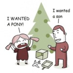 I Wanted A Pony