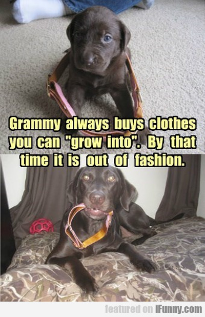 Grammy Always Buy Clothes