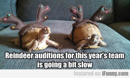 Reindeer Auditions