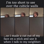 I'm Too Short To See Over The Cubicle Walls...