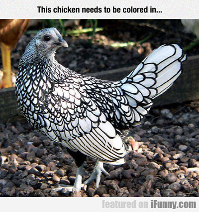 This Chicken Needs To Be Colored In...