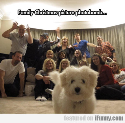 Familiy Christmas Picture Photobomb