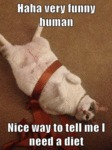Haha Very Funny Human. Nice Way To Tell..