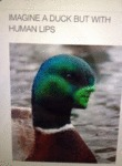 Imagine A Duck With Human Lips...