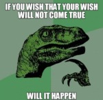 If You Wish That Your Wish....