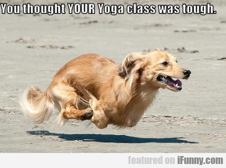 You Thought Your Yoga