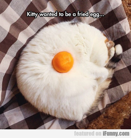 Kitty Wanted To Be A Fried