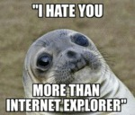 I Hate You More Than Internet Explorer...