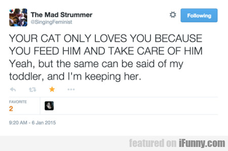 Your Cat Only Loves You