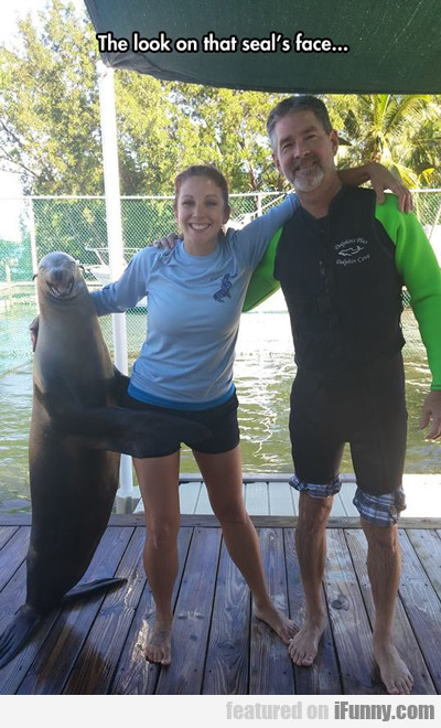 The Look On That Seal's Face...