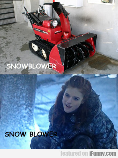 Snowblower Vs Snow Blower...