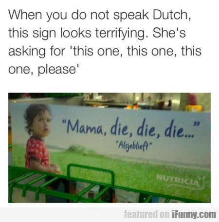When You Do Not Speak Dutch.