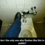 Am I The Only One Who Flushes Like This In Public?