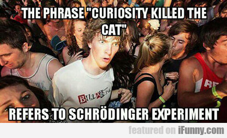 The Phrase Curiosity Killed The Cat...