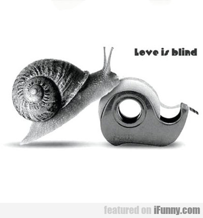Love Is Blind...