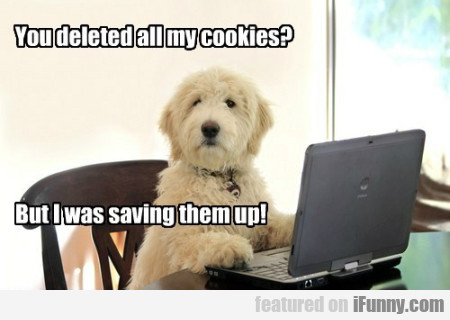 You Deleted All My Cookies...