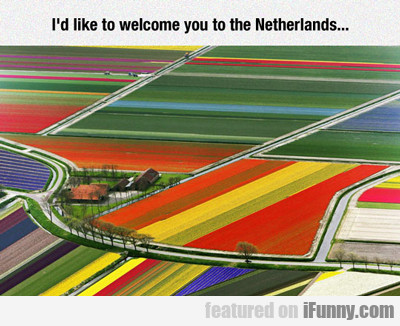 I'd Like To Welcome You To The Netherlands...