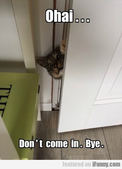 Ohai... Don't come in. Bye.