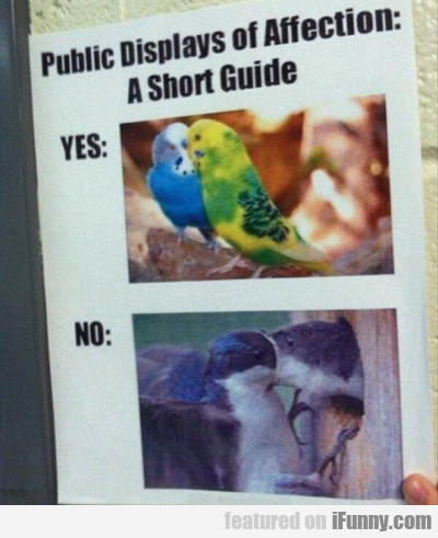 Public Display Of Affection A Short Guide