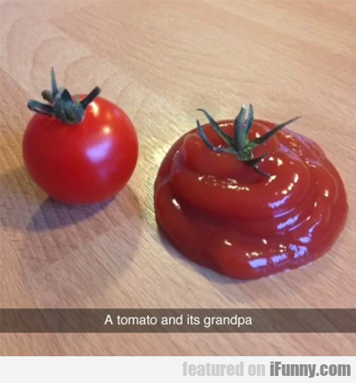 A Tomato And Its Grandpa...