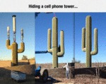 Hiding A Cellphone Tower...