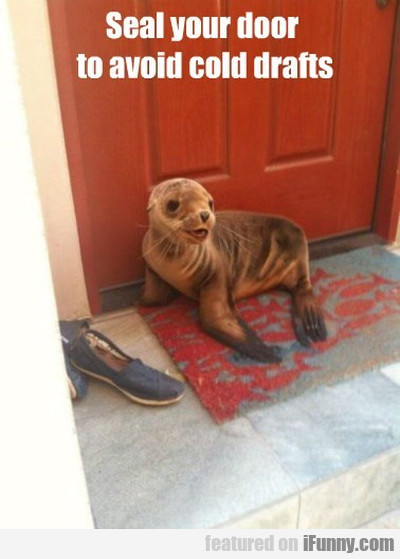 Seal Your Door To Avoid.