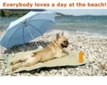 Everybody Loves A Day At The Beach.