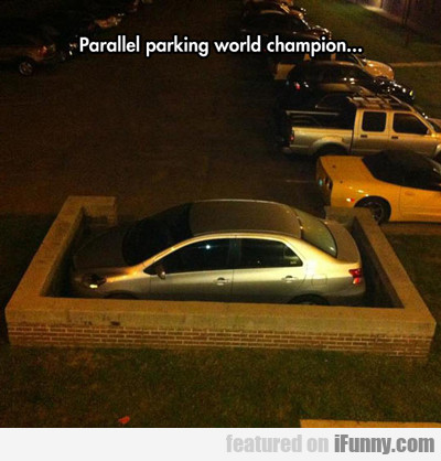 Parallel Parking World Champion...