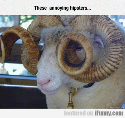 These Annoying Hipsters...